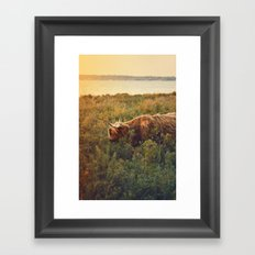 Beast of the southern wild Framed Art Print