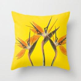 strelitzia - Bird of Paradise Flowers II Throw Pillow