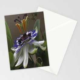 Close Up of Beautiful Passiflora Flower Stationery Cards