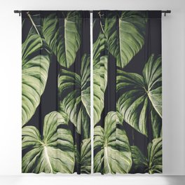 Monstera America Blackout Curtain