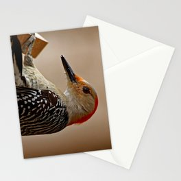 Red-bellied Woodpecker on a Feeder Stationery Cards