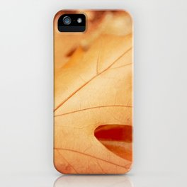 AFE Autumn Leaves, Nature Photography iPhone Case