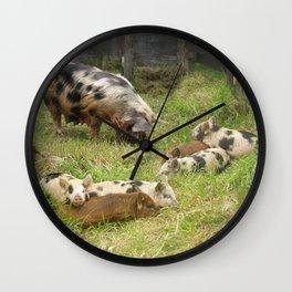 Kunekune Pigs Christmas Greeting Wall Clock