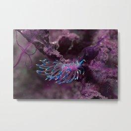 Ultraviolet Flabellina Nudibranch Metal Print