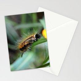 Fuzzy Caterpillar Stationery Cards