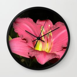 Pink - Rose Day Lily against black Wall Clock