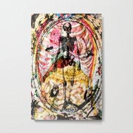 Memo Les Mânes Metal Print