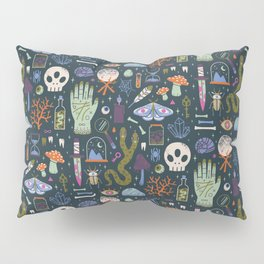 Curiosities Pillow Sham