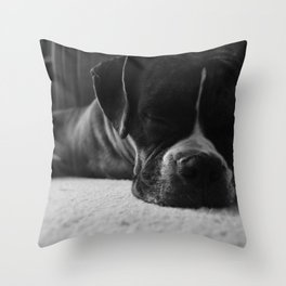 Sleeping Dogs Lie Throw Pillow