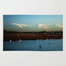 Bolsa Chica Wetlands Huntington Beach, California Rug