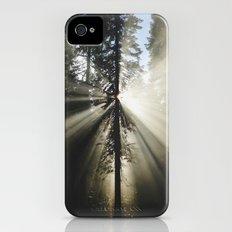 Umpqua Rays iPhone (4, 4s) Slim Case