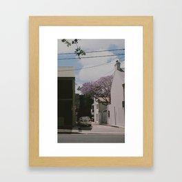 Jakaranda I Framed Art Print