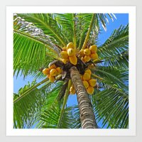 coconut wishes Art Prints featuring COCONUT by Lartte