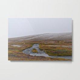 Light Snow on the Tundra Metal Print