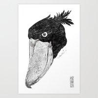 Shoebill stork head Art Print