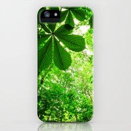 Rainforest Radiance iPhone Case