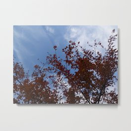 Some of the Leaves, More of the Sky Metal Print