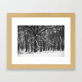 Tree in the winter (RR 272) Framed Art Print