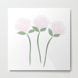 Watercolor White Pink Roses Metal Print