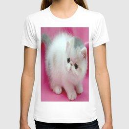 beyaz kedi T-shirt