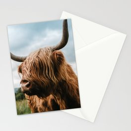 Scottish Highland Cattle - Animal Photography Stationery Cards