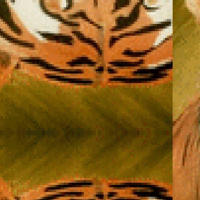 Bengal Tiger Pattern Leggings