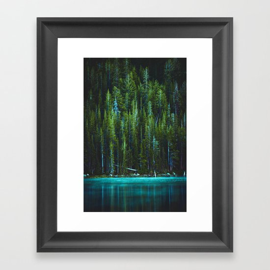 Evergreen Forest on Water (Color) by nocolordesigns