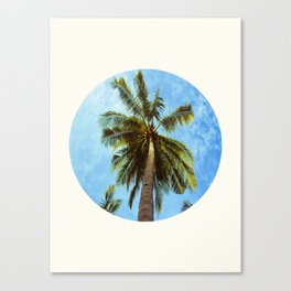Mid Century Modern Round Circle Photo Looking Up At A Tropical Palm Trees Canvas Print