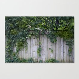 The Green Can Never Be Blocked Canvas Print