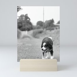 Wandering Mini Art Print