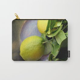 Pewter There Carry-All Pouch