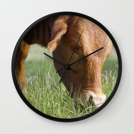Ellen Grazing @ Happy Hooves Farm Sanctuary Australia Wall Clock