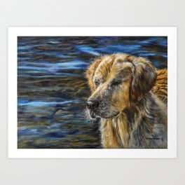 One Wet Golden Retriever by Teresa Thompson Art Print