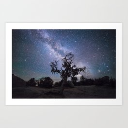 Astronomer's Tree Art Print