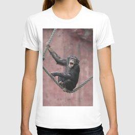 Chimpanzee_001_by_JAMFoto T-shirt