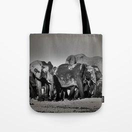 Elephant Herd Circling Tote Bag