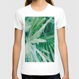 Botanical photography print | Light green tropical leaf of a palm | Jungle wanderlust art - Art print T-shirt