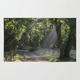 Early morning light burning through mist along a remote track. Norfolk, UK. Rug