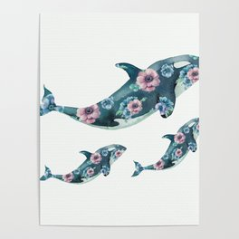 Rose Garden Whales Poster
