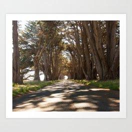 Tunnel of Trees Photography Print Art Print