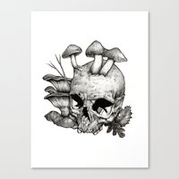 mushrooms Canvas Prints featuring Mushrooms by Arnaud Gomet