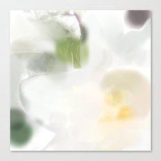 Madonna Lily #3 Canvas Print