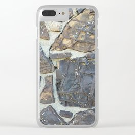 Dinosaur Bone House #1 Clear iPhone Case
