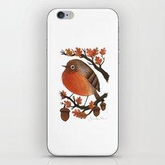 The Robin's Acorn iPhone & iPod Skin