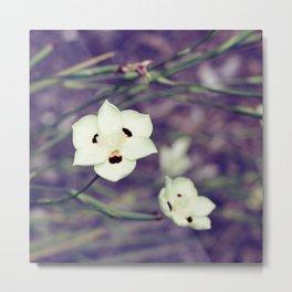 White Flowers with Orange & Black Detail Metal Print