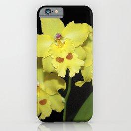Glorious Golden Orchid - Odontonia Yellow Parade Alpine iPhone Case