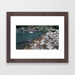 Natural Pond Framed Art Print
