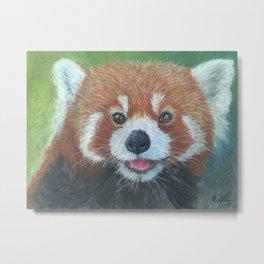 Red Panda (Ailurus fulgens) Metal Print