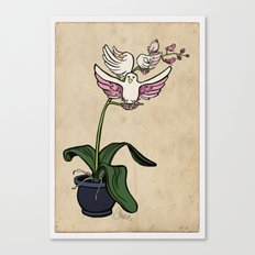 THE RARE SONGBIRD ORCHID Canvas Print