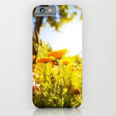 Garden Flowers iPhone 6s Slim Case